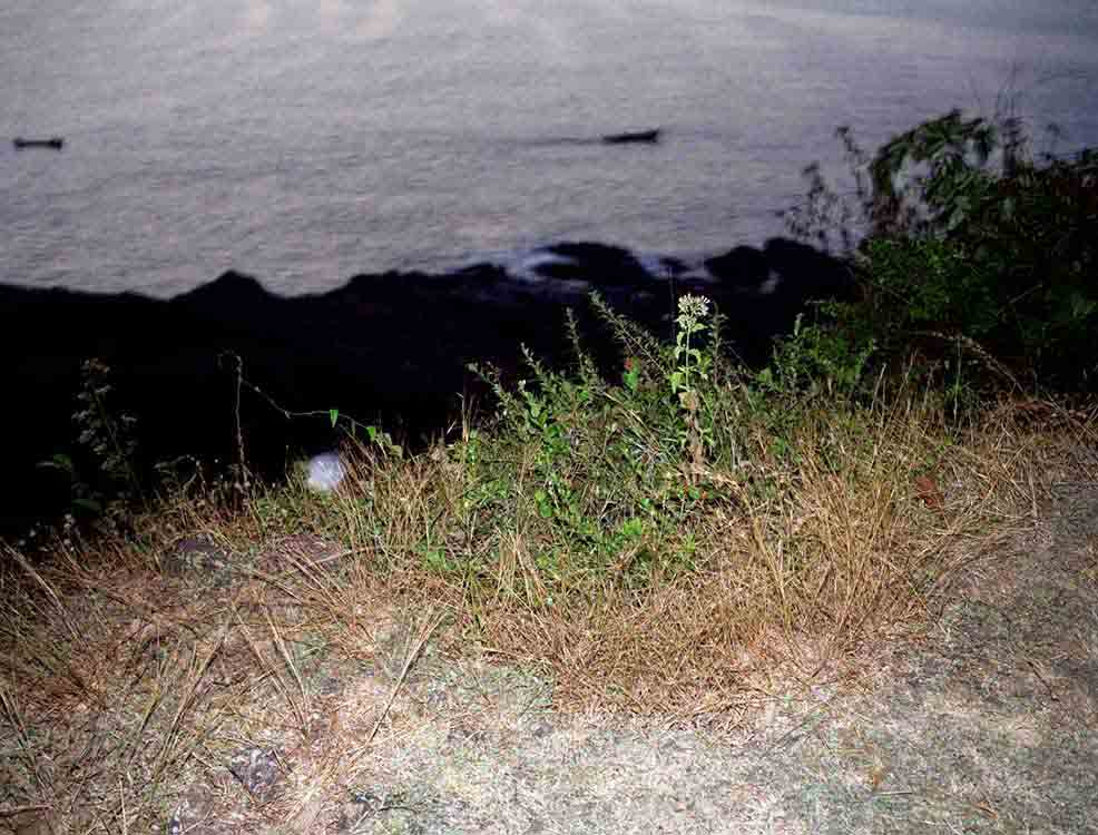 Boats from a Cliff 2004 C Print 95cm x 120cm
