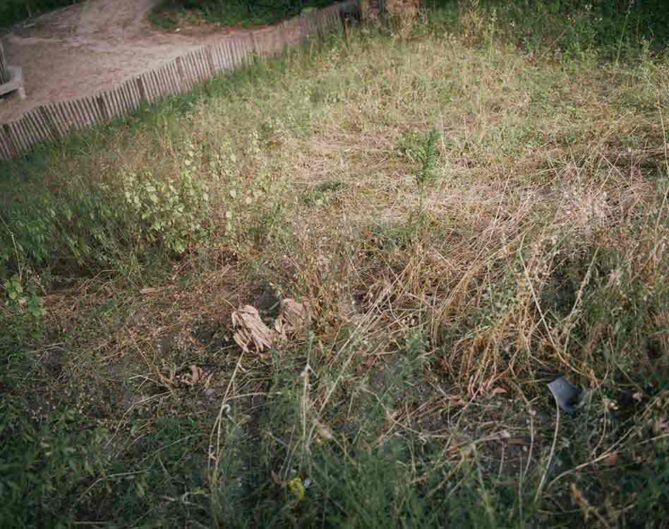 Photographs 2003-2005